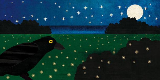 """Illustrazione da """"Con occhi animali"""""""